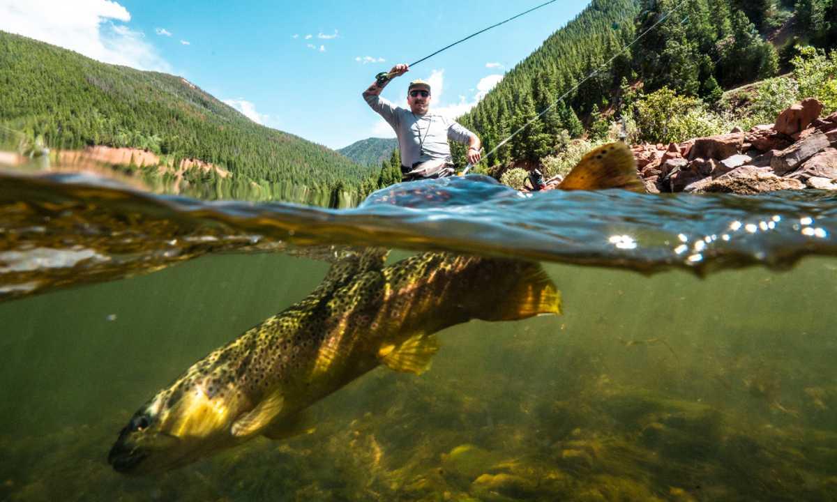 pêche à la mouche noyée